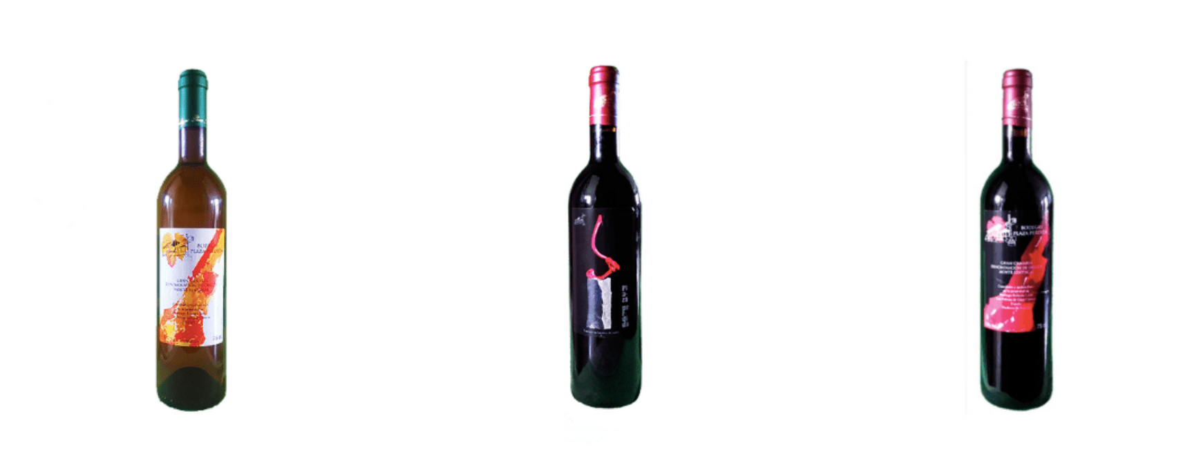 Vinos Plaza Perdida