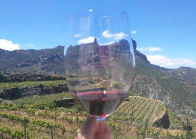 the_summit_360_wine_tasting