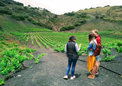 the_valley_and_the_volcano_winemaker explaining the terroir